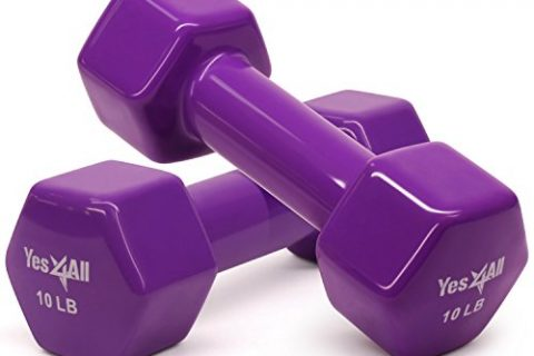 Yes4All Vinyl Coated Dumbbells – PVC Hand Weights for Total Body Workout Set of 2, Purple, 10 lbs