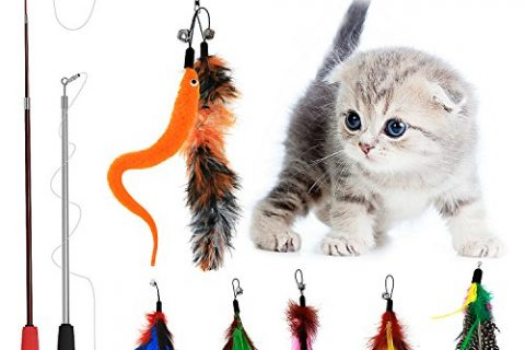 Tacobear 2 pack Retractable Interactive Teaser Cat Wand 7 Refills Feathers Cat Feather Toys For Cat