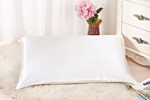 ALASKA BEAR – Natural Silk Pillowcase, Hypoallergenic, 19 momme, 600 thread count 100 percent Mulberry Silk, Queen Size with hidden zipperIvory white