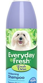 Fresh 'n Clean Everyday Fresh Whitening Shampoo, 16 oz