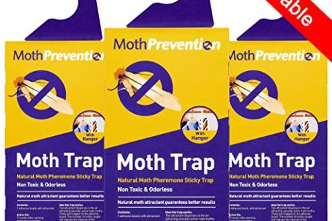 MOTH TRAPS FOR CLOTHES MOTHS – Best Catch-Rate for Clothes Moth and Carpet Moth Traps on the Market! – 3-Pack from Moth Prevention