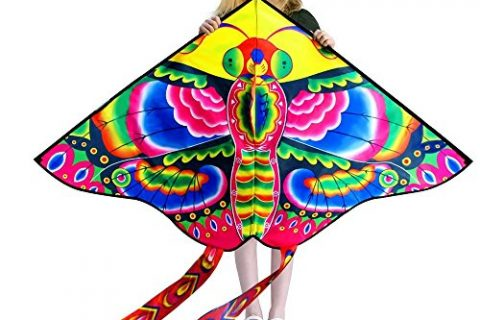 Hengda Kite So Beautiful Peony Butterfly Kite Single Line Kite Incudes 30m String and Handle