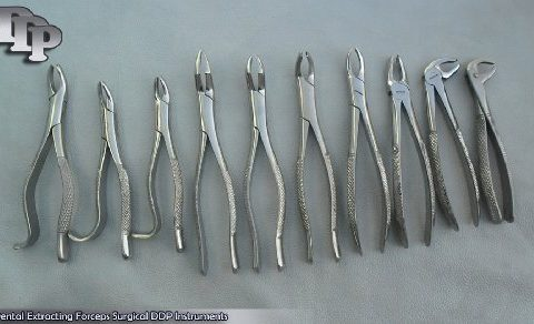 10 Pieces Of EXTRACTING FORCEPS EXTRACTION DENTAL SURGICAL DDP INSTRUMENTS
