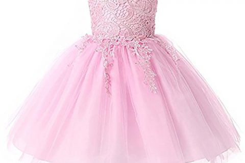 Kamo Girl Embroidered Sleeveless Lace Tutu Princess Dress