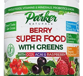 240 Grams, 22000 ORAC – Berry Green Superfood Powder with Organic Greens & Organic Fruits, Enzymes, Probiotics, Antioxidants, Vitamins, Minerals – Non GMO, Vegan & Gluten Free – Alkalize & Detox