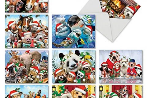 MERRY CHRISTMAS TO ZOO: 10 Assorted Christmas Note Cards: Assorted Christmas Note Cards With Envelopes. M6652XSG