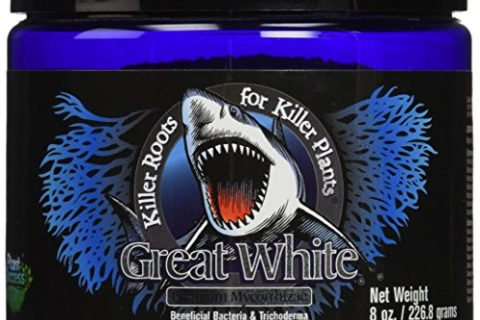 Great White 100049824 8 oz Mycorrhizae, White