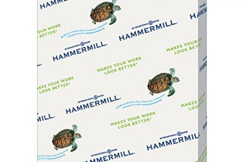 Hammermill Colored Paper, Blue Printer Paper, 20lb, 8.5×11 Paper, Letter Size, 500 Sheets / 1 Ream, Pastel Paper, Colorful Paper 103309R