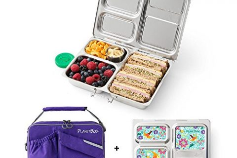 PlanetBox LAUNCH Eco-Friendly Stainless Steel Bento Lunch Box with 3 Compartments for Adults and Kids – Purple Carry Bag with Flora Fun Magnets