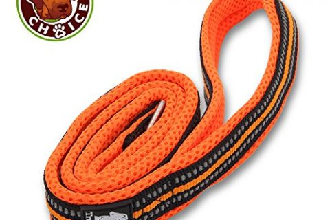 Chai's Choice Pet Products 44″ Best Padded 3M Reflective Outdoor Adventure Dog Leash, Medium, Orange