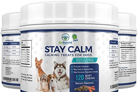 Dog Calming Treats for Stress, Jumping, Thunder & Barking | Bacon Flavored Soft Dog Chews – 120 Calming Treats for Dogs – Dog Anxiety Relief – With Organic Hemp Protein + Valerian + L Tryptophan
