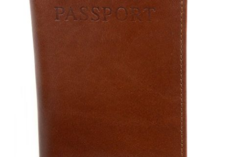 AlpineSwiss RFID Blocking Leather Passport Cover ID Protection Travel Case Brown