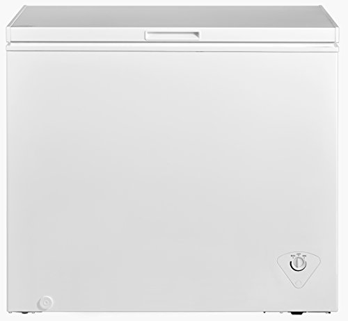Top 8 10 Cubic Foot Chest Freezer – Chest Freezers