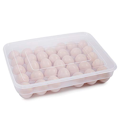Top 10 Eggs Holder Case – Refrigerator Egg Trays