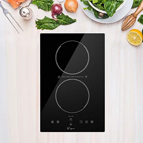 Top 10 Induction Cooktop 120V – Cooktops