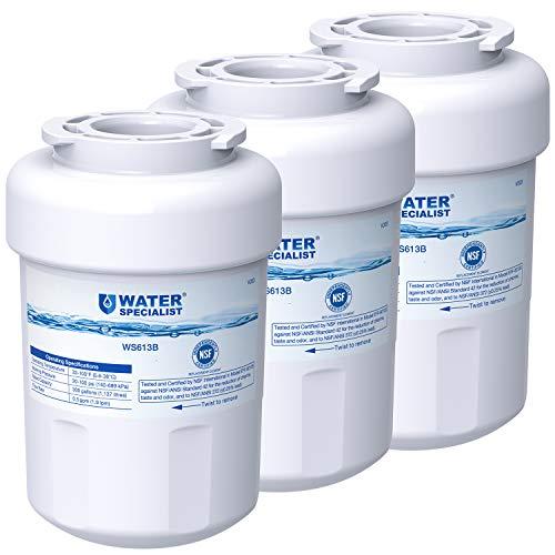 Top 10 Fmg-1 Refrigerator Water Filter GE Model MWF – In-Refrigerator Water Filters