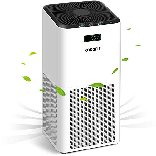 Top 10 Coming up for Air – HEPA Filter Air Purifiers