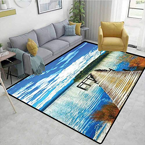 Top 10 Shag Rug 8×10 – Household Carpet Cleaners