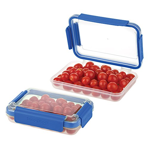 Top 10 Glass Freezer Containers with Lids BPA Free – Refrigerator Egg Trays